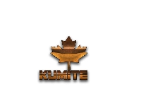 CANADIAN KUMITE - REPLAY Logo