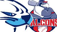 LIVE: Victoria HarbourCats vs Kelowna Falcons Double Header Logo