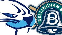 LIVE: Victoria HarbourCats vs Bellingham Bells Logo
