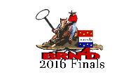 2016 BRN4D Finals Logo
