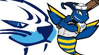 LIVE: Victoria HarbourCats vs Kitsap BlueJackets Logo